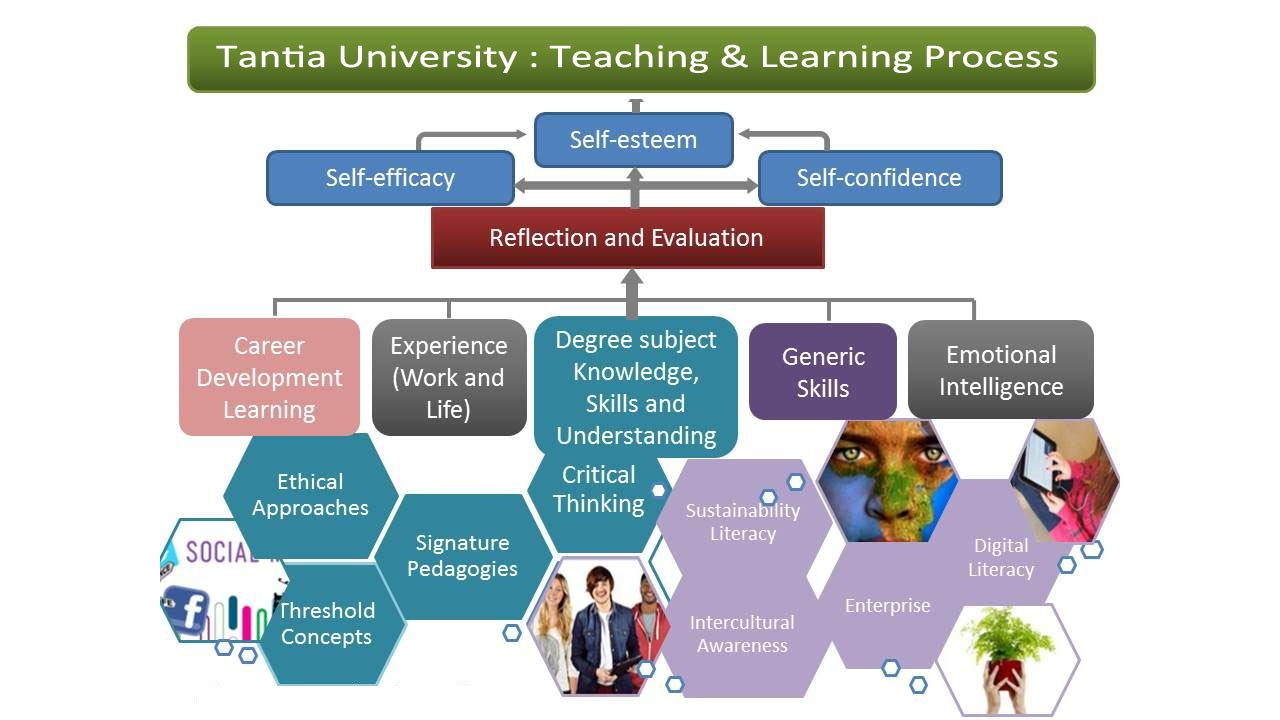 evaluation of teaching and learning approaches Evaluation is concerned with assessing the effectiveness of teaching, teaching strategies, methods and these specific objectives will provide direction to teaching-learning process not only that it will also it tries to compare one course with another the approaches of summative evaluation imply.
